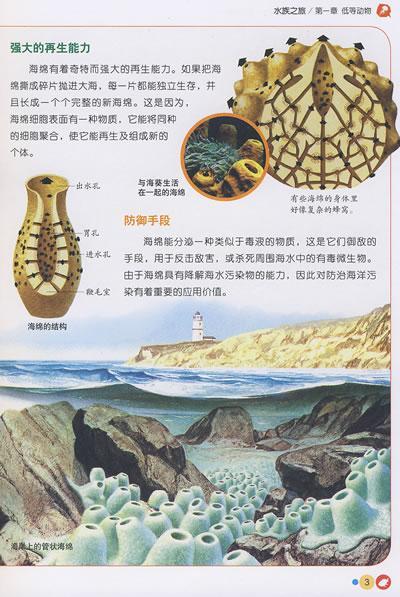 水族之旅/中国儿童动植物百科-龚勋;龚勋-科普/百科
