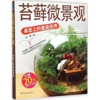 苔藓微景观:桌面上的童话世界