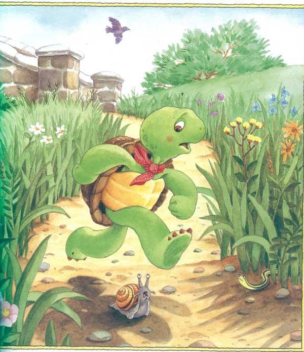 小乌龟富兰克林-快点儿富兰克林