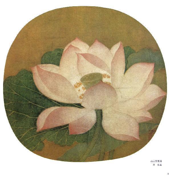 夏卉骈芳图页绘画步骤