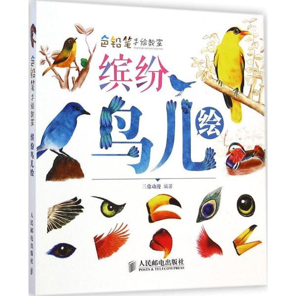 色铅笔手绘教室(缤纷鸟儿绘)