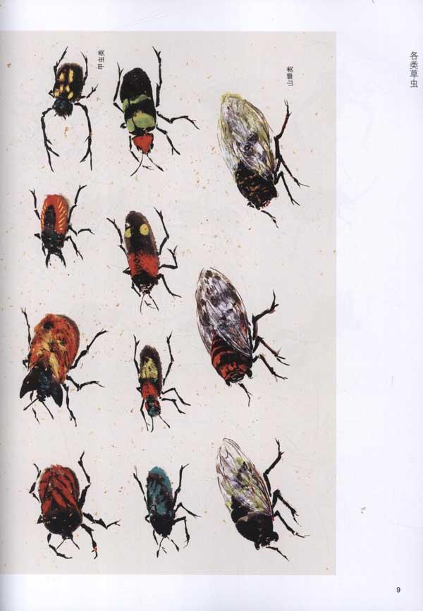 画法步骤 各类草虫; 中国画入门:虫鱼;