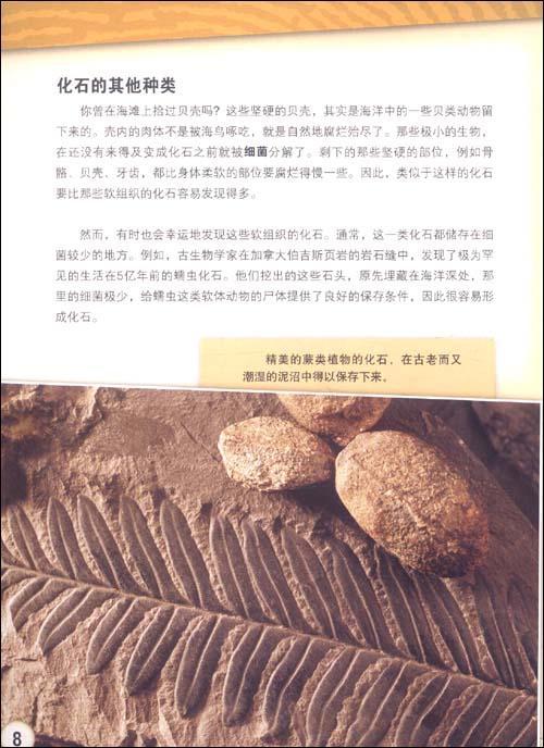 古生物学家工作揭秘