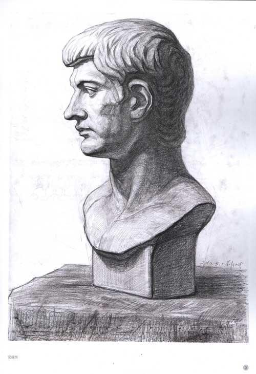 书中所画的石膏头像绝大部分是欧洲雕塑大师艺术精品