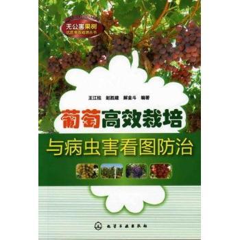 葡萄高效栽培与病虫害看图防治