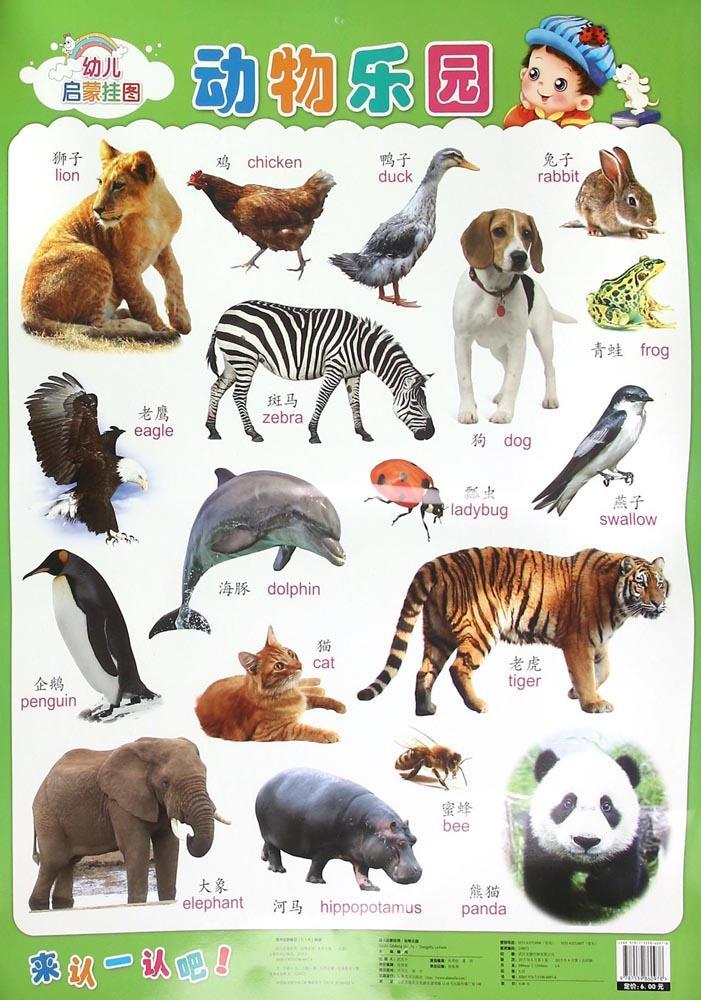 幼儿启蒙挂图(动物乐园)
