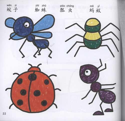 蒙纸学画:动物交通-陈梦鸽--文轩网