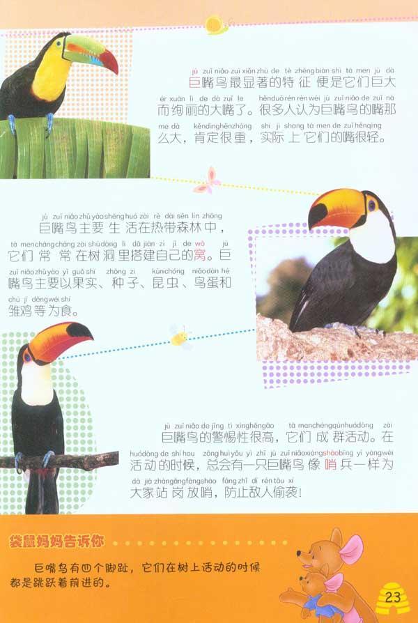 套认读动物百科:鸟》是一套适合幼儿认知汉字的图书