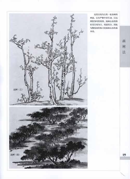 目录 一山水画概述 二画树法