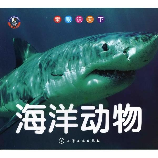 海洋动物-《童眼识天下:海洋动物》编写组 -科普/百科
