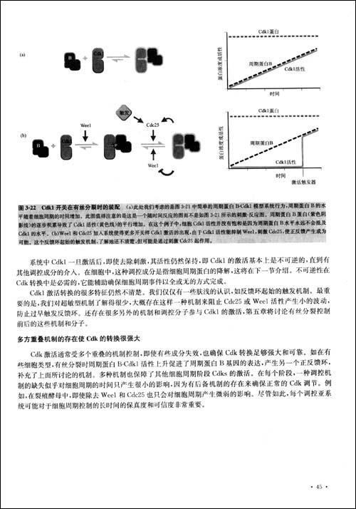 细胞的结构与功能框架图