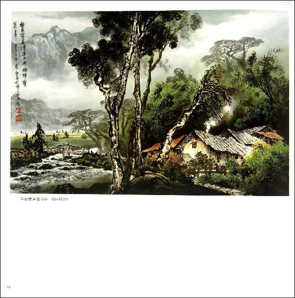 张泉宗彩墨山水画技法视频让我们看看.
