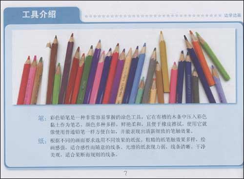 彩色铅笔画禽鸟