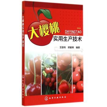 大樱桃实用生产技术