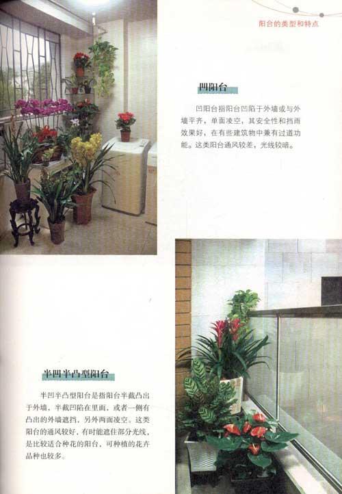 家庭宝典:阳台花卉种养与布置