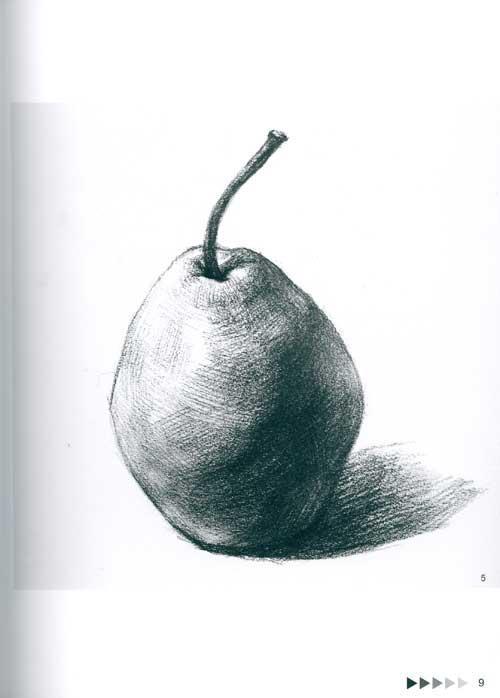 单个静物的多角度表现 素描蔬果